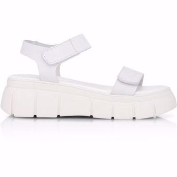 Solar Plain Leather Shoe Biz